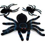 ハロウィ蜘蛛