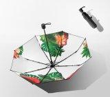 UV50+傘